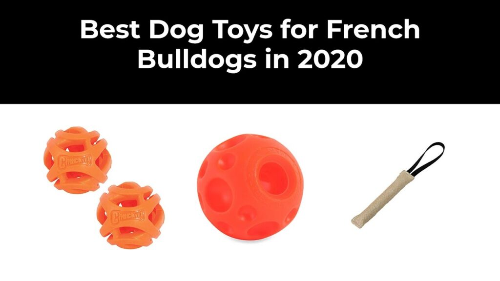 Best Dog Toys for French Bulldogs in 2020