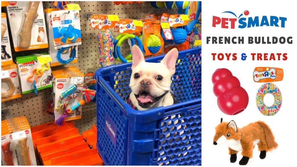 French Bulldog Goes Shopping at PetSmart: Toys + Treats | Frenchie Trekker TV