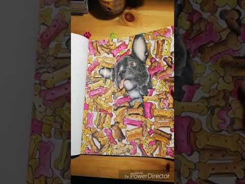 French Bulldog colouring book volume 1 (flip through)