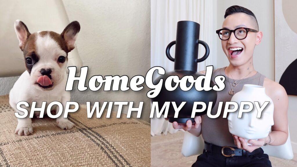HOME DECOR SHOPPING & HAUL | LIVINGROOM PLANS | WE GOT A NEW PUPPY!