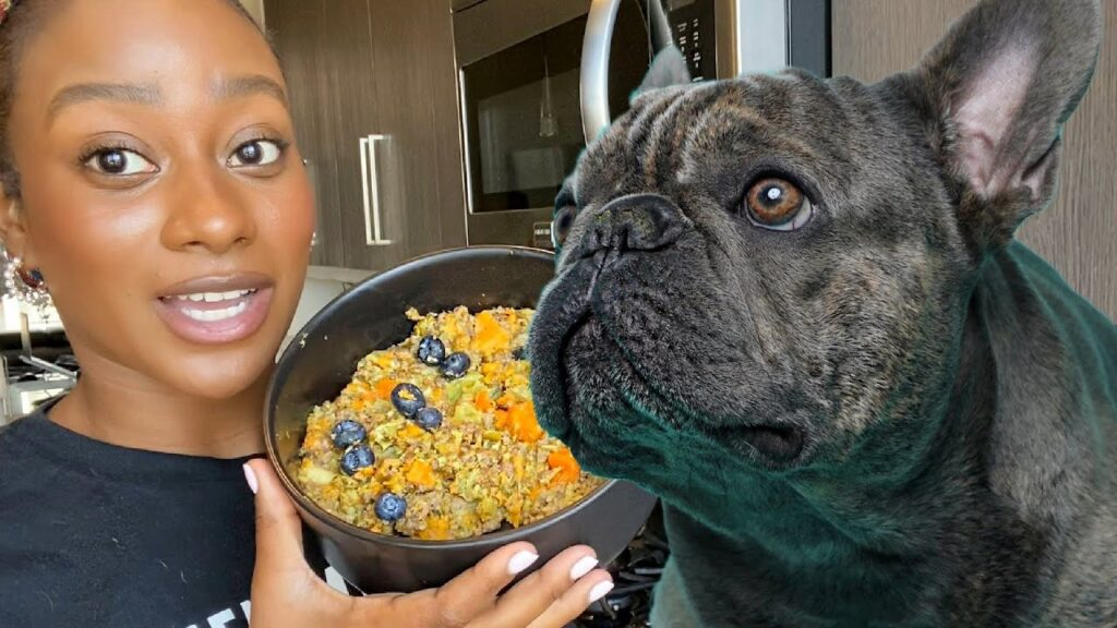 HOW TO MAKE DOG FOOD UNDER A BUDGET FOR FRENCH BULLDOGS!