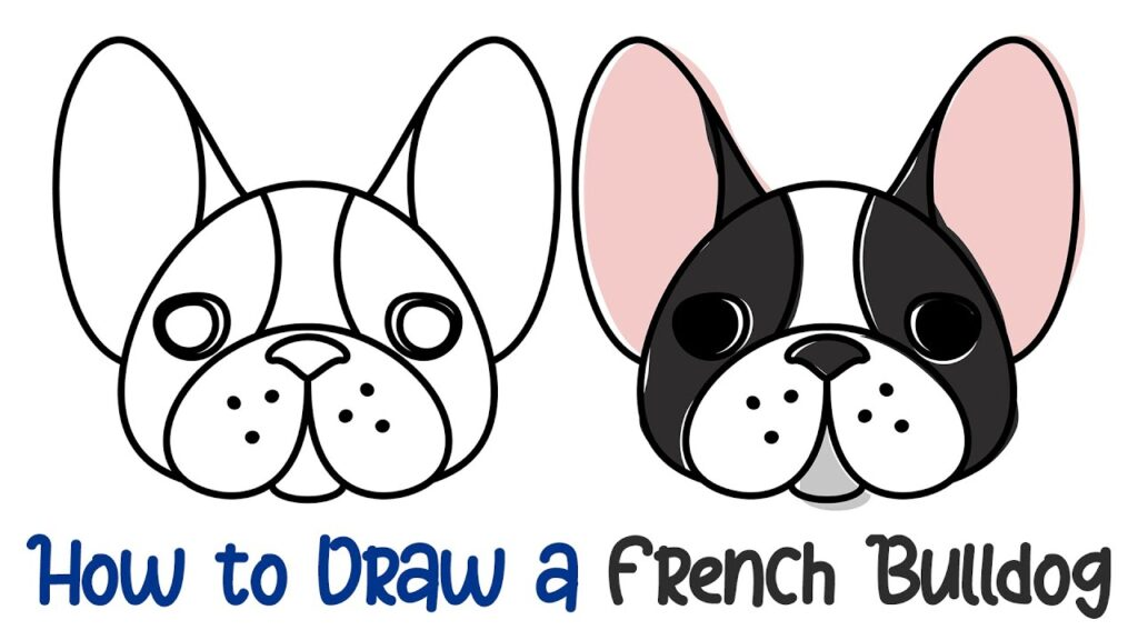 How to Draw a French Bulldog – Super Easy!