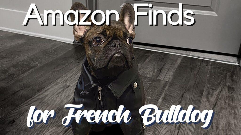 Puppy Amazon Haul | FRENCH BULLDOG EDITION