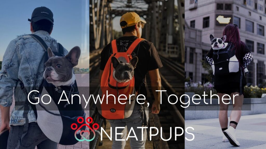 The Best Dog Carrier Backpack in the World | NeatPups™ K9 Travel Pack!